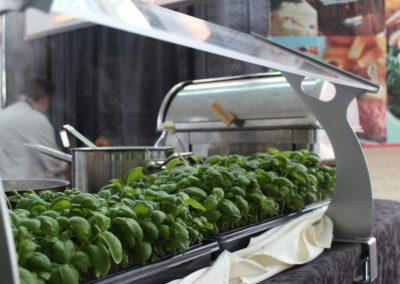 Fresh Herbs at Niagara Icewine Festival